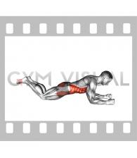Kneeling plank (male)