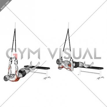 Suspender Wide Grip Inverted Row