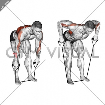 Band Bent Over Wide Grip Row (male)
