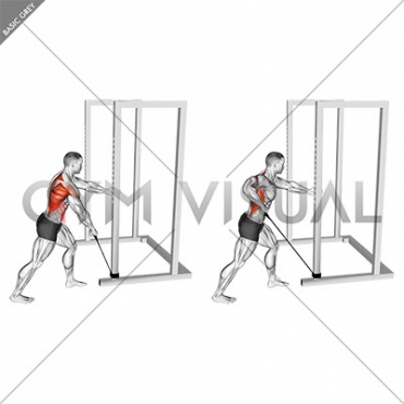 Band One Arm Standing Wide Grip Low Row