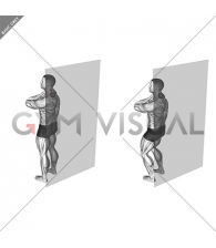 Roll Ball Scapula Levator (VERSION 2)