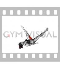 Adductor Stretch (female)