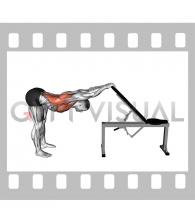 Back Pec Stretch