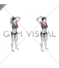 Above Head Chest Stretch (female)