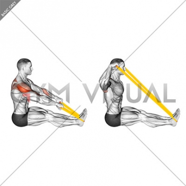 Resistance Band Seated Face Pull