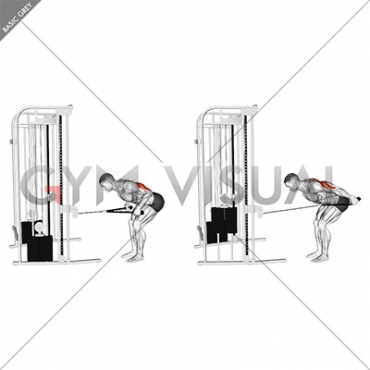 Cable Bent-Over Neutral Grip Kickback with Rope Attachment