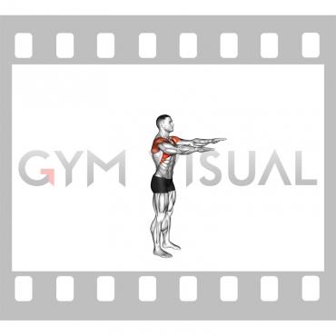 Standing Overhead Shoulder Stretch (VERSION 2)