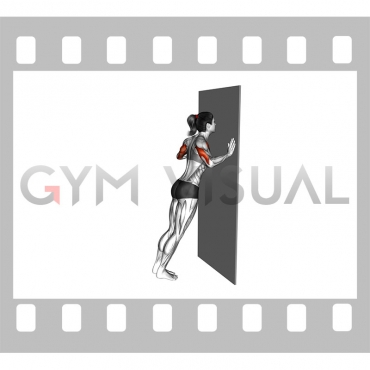 Push-up (wall) (female)