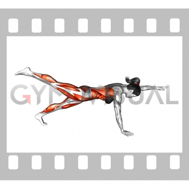 Front Plank with Arm and Leg Lift (push-up position) (female)
