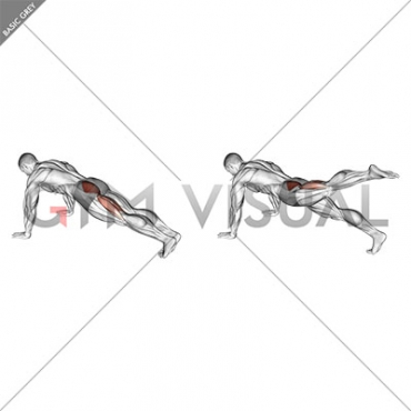 Hip Extension Stretch (male)