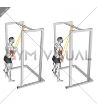 Resistance Band Triceps Pushdown