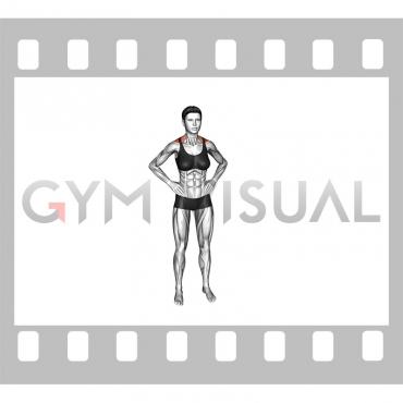 Bodyweight Standing Shrug (female)