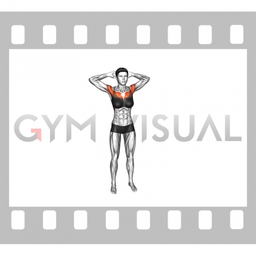 Bodyweight Standing Triangle Fly (female)