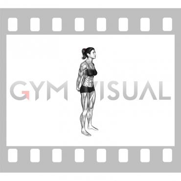 Bodyweight Standing Back Stretch (female)