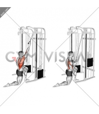 Cable Kneeling One Arm Lat Pulldown