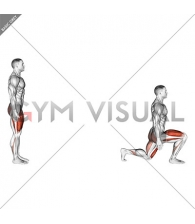 Bodyweight Forward Lunge (Smaller Stance Upright Torso)