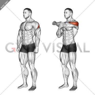 Rear Deltoid Stretch