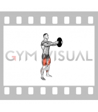 Weighted Counterbalanced Squat (male)