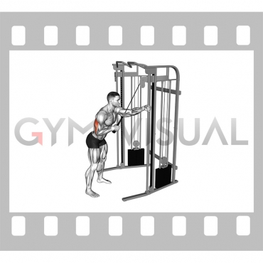 Cable Single Arm Triceps Pushdown (rope attachment)