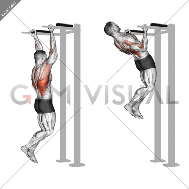 Reverse grip Pull-up