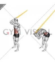 Resistance Band Standing Ab Crunch