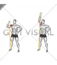 Resistance Band Single Arm Overhead Shoulder Press