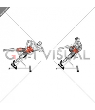 45 degree Bycicle Twisting Crunch (male)