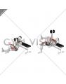 Dumbbell Sprinter Thrust Chest Press