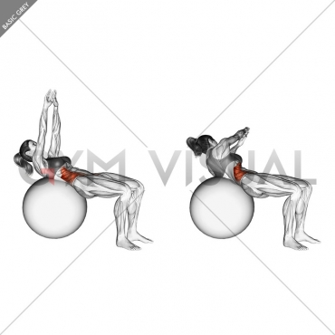 Russian Twist (on stability ball arms straight)