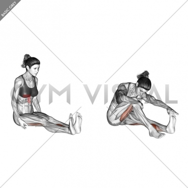 Seated Straight Leg Calf Stretch