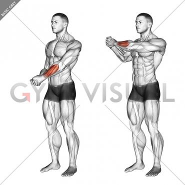 Side Wrist Pull Stretch