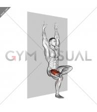 Single Leg Sit (wall)