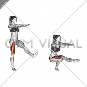 Single Leg Squat (pistol)