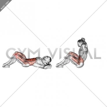Sit-Up (version 2)