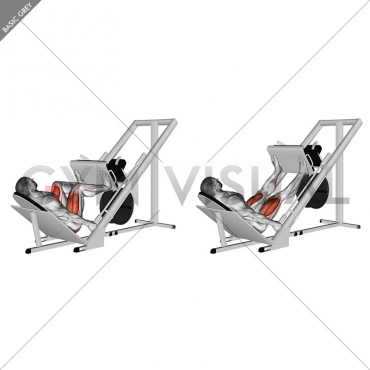 Sled 45° Leg Wide Press