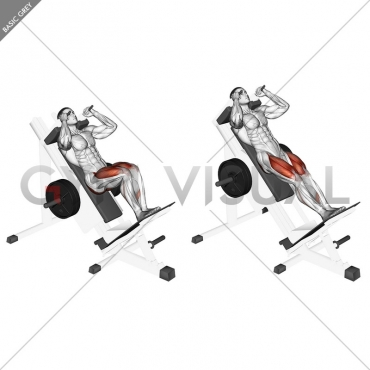 Sled Closer Hack Squat