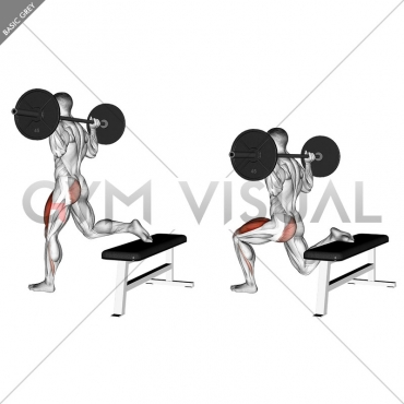 Barbell One Leg Squat