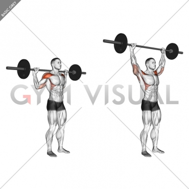 Standing Behind Neck Press