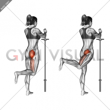 Standing Hip Extension (bent knee)