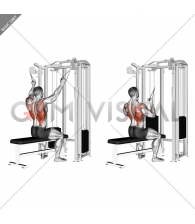 Twin handle parallel grip lat pulldown