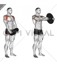Weighted Front Raise