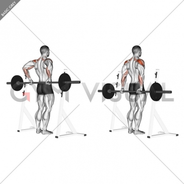 Barbell Rear Delt Raise