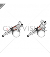Weighted Side Bend (on stability ball)