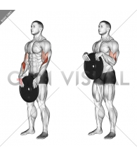 Weighted Standing Curl