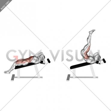Incline Leg Hip Raise (leg straight)