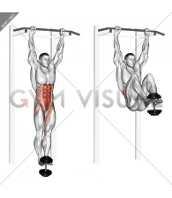 Weighted Hanging leg-hip raise