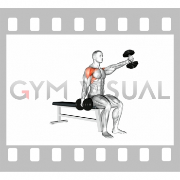 Dumbbell Seated Alternate Front Raise