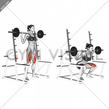Barbell Full squat (with rack)
