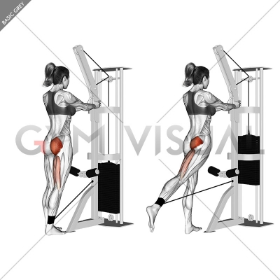 Cable standing hip extension (version 2)