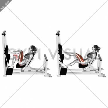 Lever Horizontal One leg Press